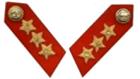 Lieutenant General Collar Patch